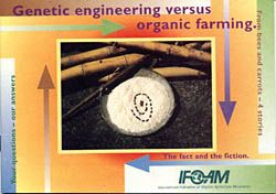 Genetic Engineering versus organic farming